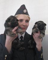 В Челябинске открылся собачий роддом