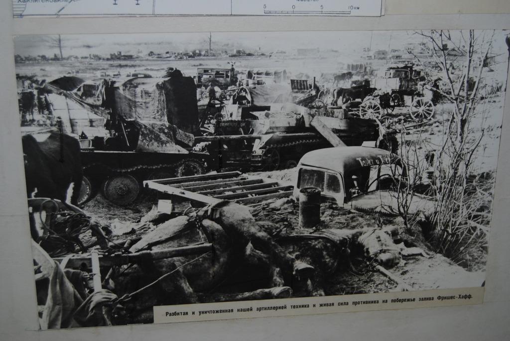 Конец дивизии Великая Германия. 7803646.jpg