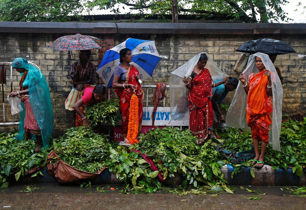 Ноябрьские кадры из Индии