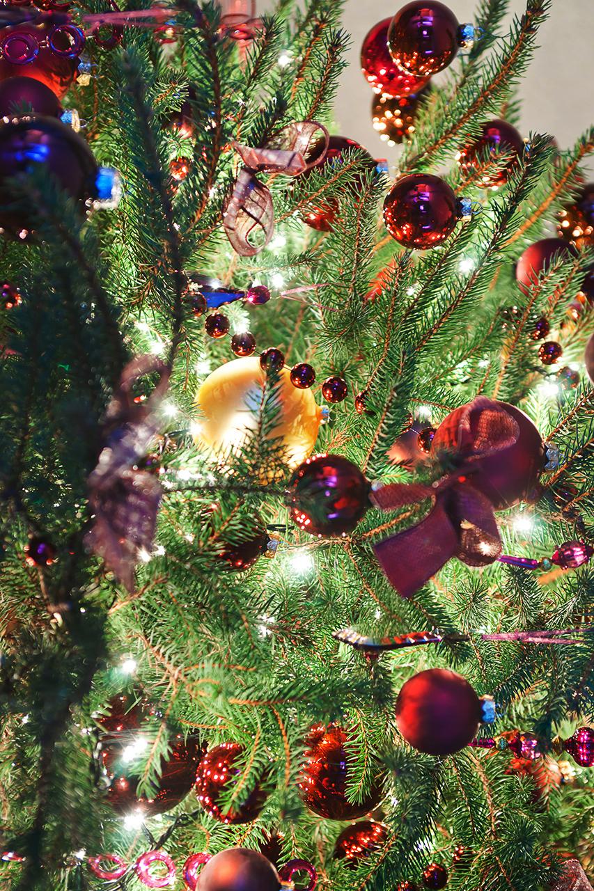 фотографии Новогоднего настроекния.
