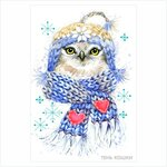 Owl-in-the-blue-scarf.jpg