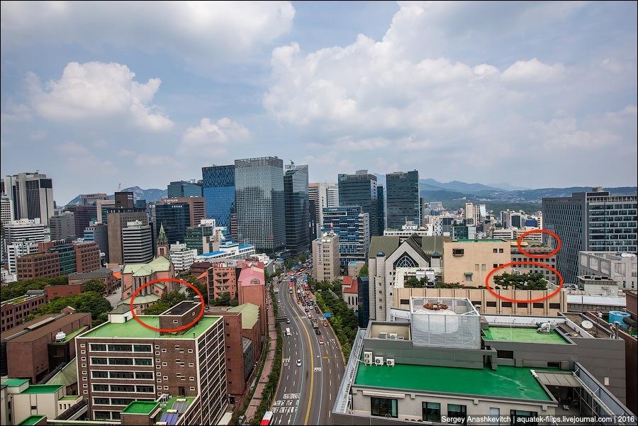 Как оживляют бетонные джунгли в Сеуле (16 фото)