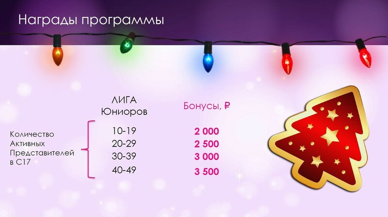 Программа для Координаторов Активный Новый год