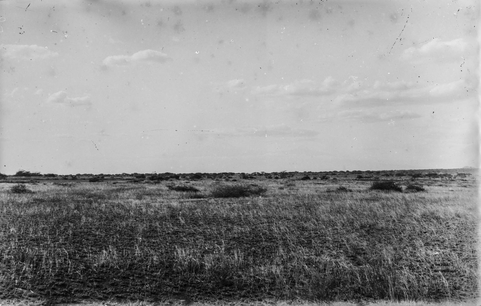 35. Степной пейзаж в районе Пангани