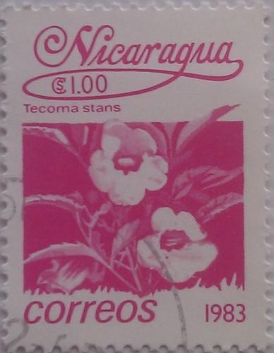 никарагуа 1983 цветок розов 1.00