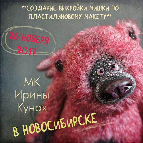 мк в Новосибирске, 26 ноября 2017