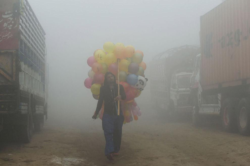 6. Или продавца фруктов. (Фото K.M. Chaudary):