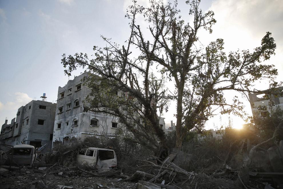 23. Руины древнего города Газа спустя ровно месяц после начала войны.  Также смотрите последств