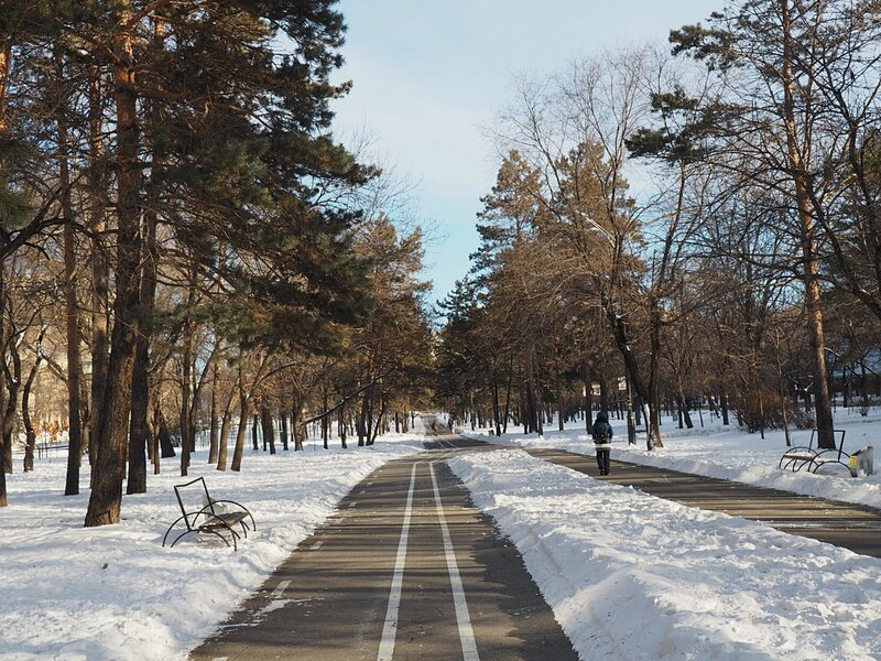 Хабаровск, Амурский бульвар (Khabarovsk, Amursky boulevard)