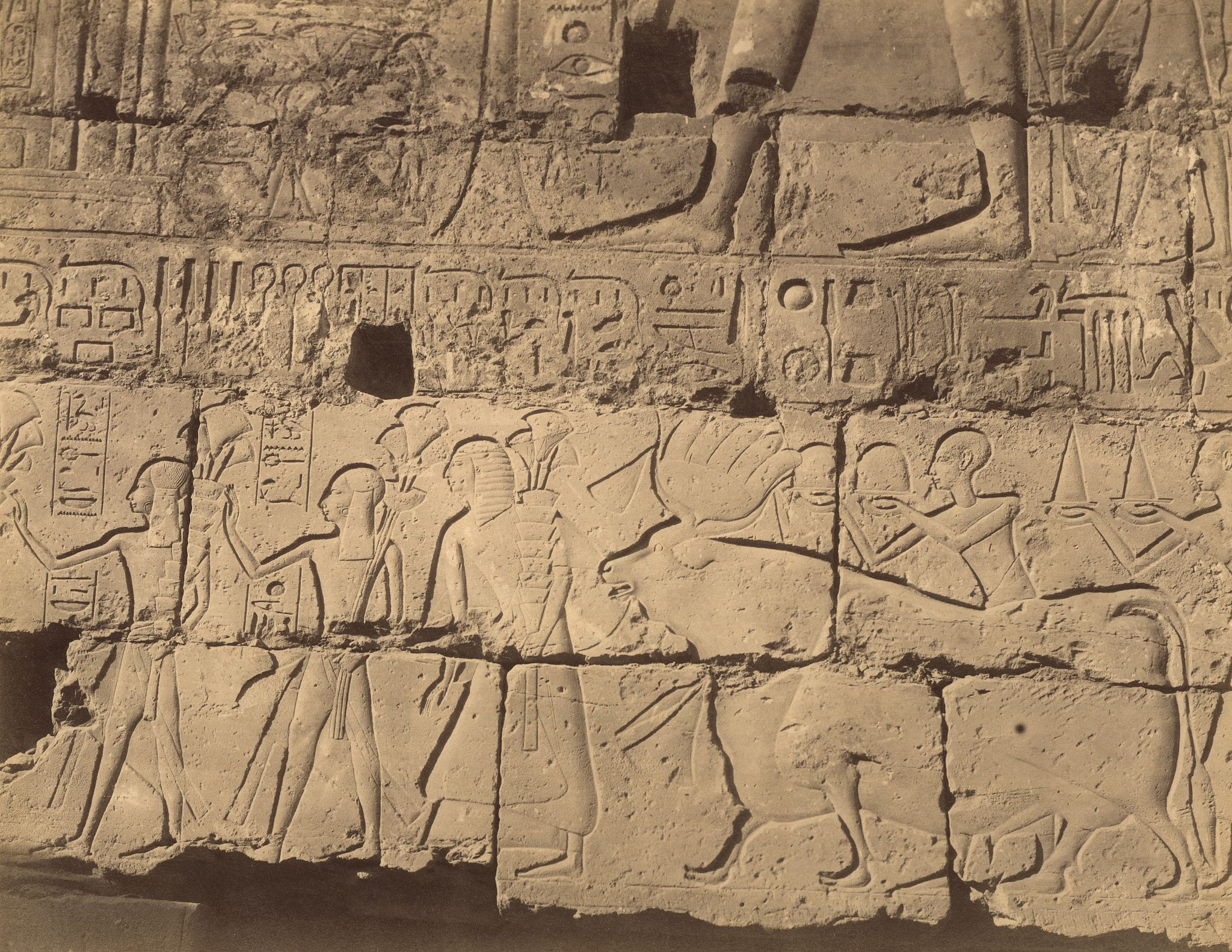 Луксор. Рельефы храма