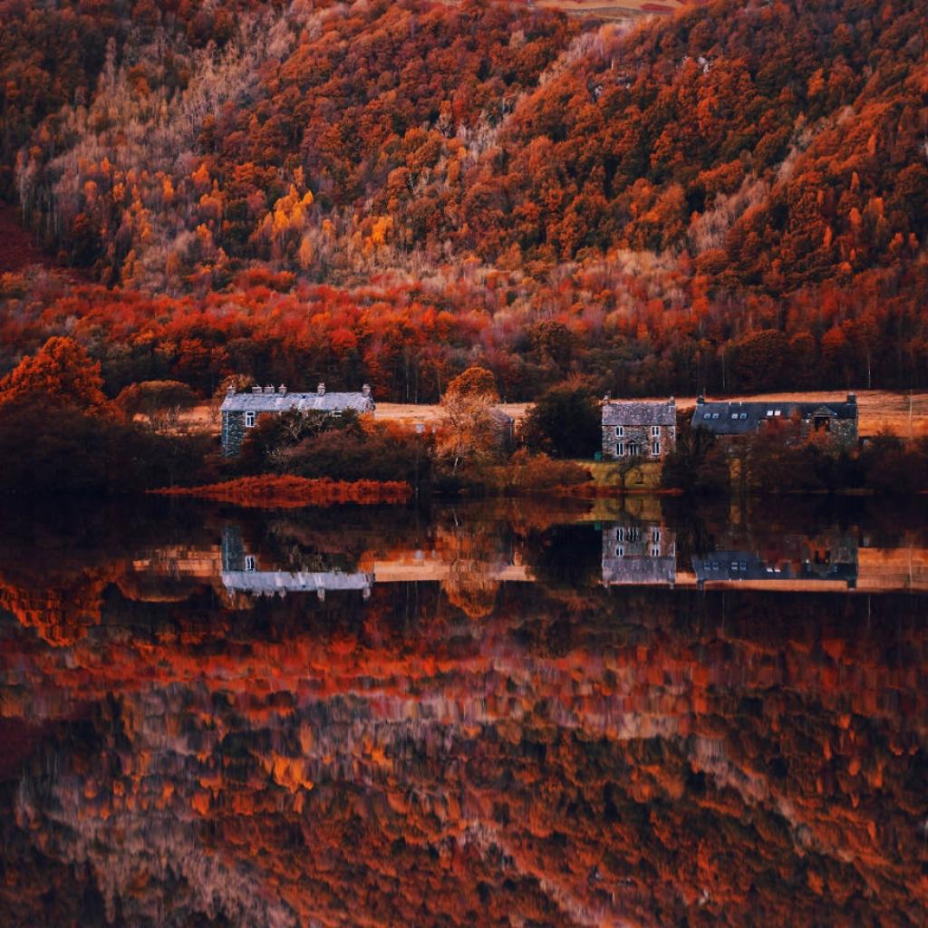 autumn0066-59e7b7a653c2d__880.jpg