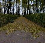 Осень Летний сад P1150817