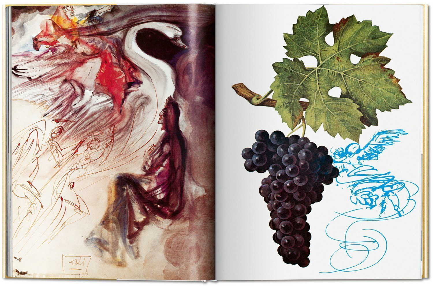 The Wines of Gala: Salvador Dali's Surrealist Wine Guide Republished for the First Time in 40 Years
