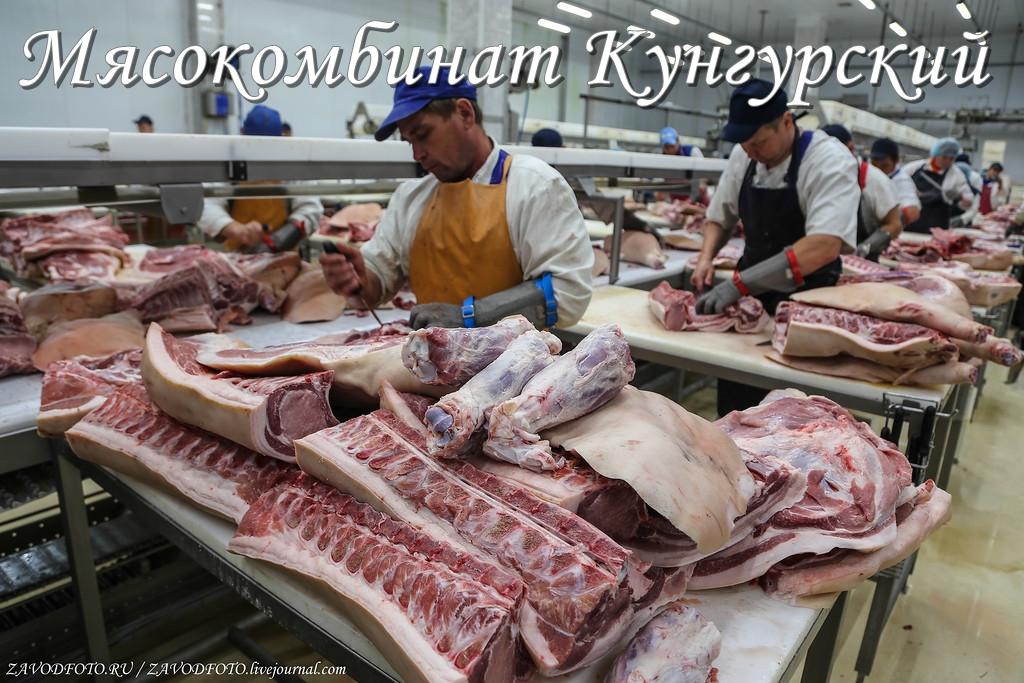 Мясокомбинат Кунгурский.jpg