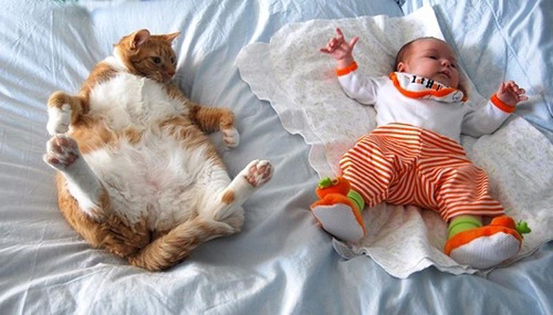 8. Спящий ребенок.    Просто повторяйте все движения и позы за ребенком.