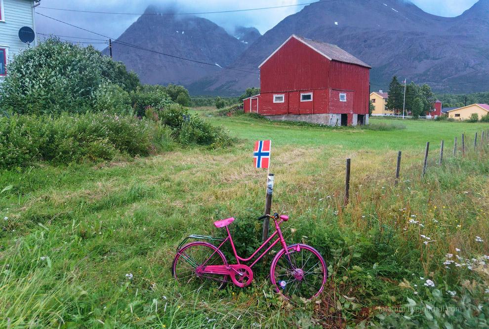 4. Велосипед — клумба.