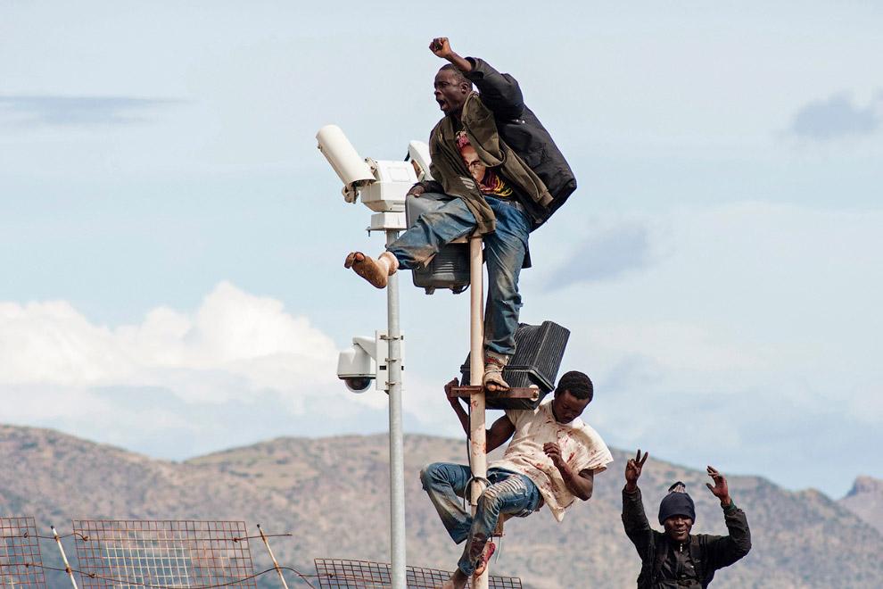 9. Колючая проволока на заборе мало кого останавливает, 3 апреля 2014.