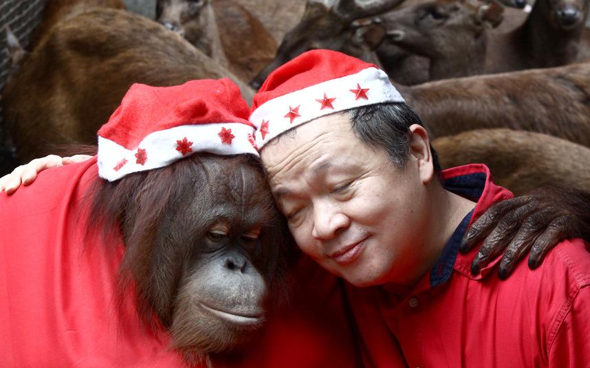 4. Вы к кому? Раненая сова проходит реабилитацию в центре для животных в провинции Шэньси, Китай. (Ф