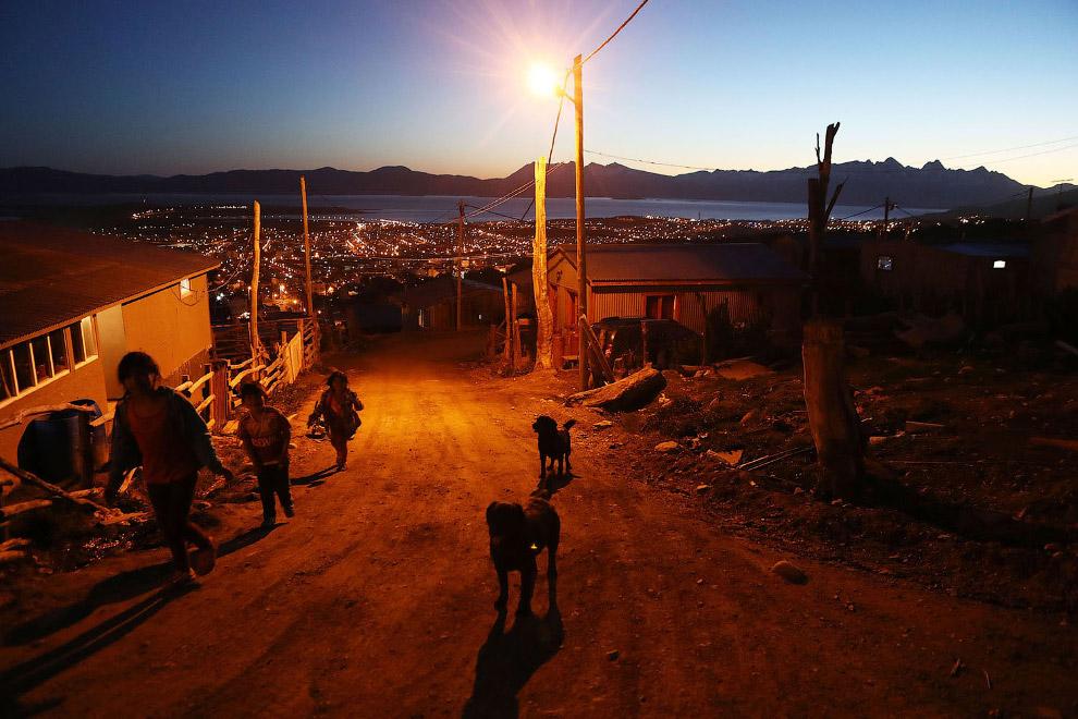10. Пастух. (Фото Mario Tama):