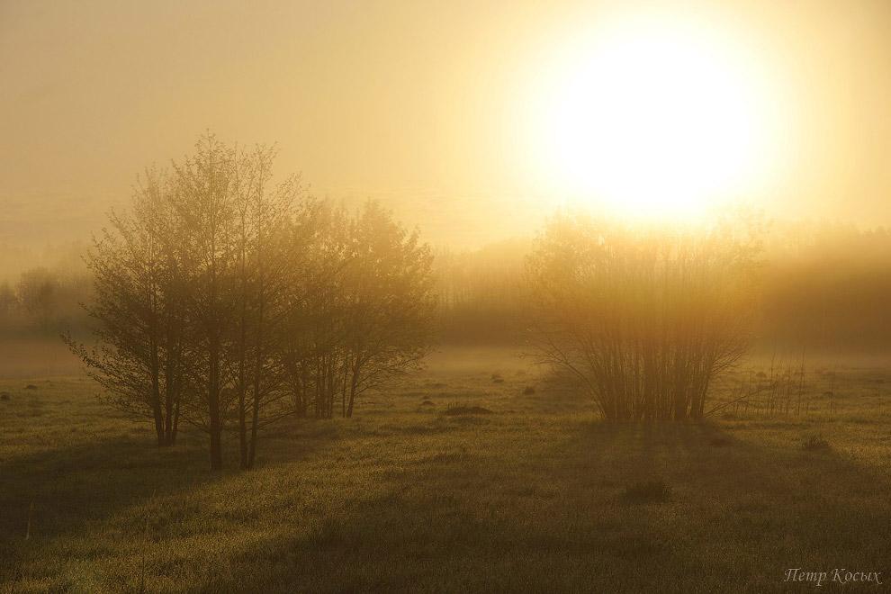 19. Солнце поднимается все выше. Сажусь в машину и переезжаю на другой берег реки.