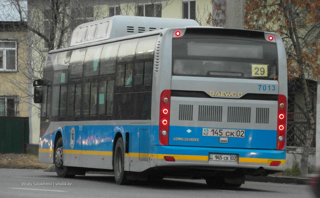 29 автобус.
