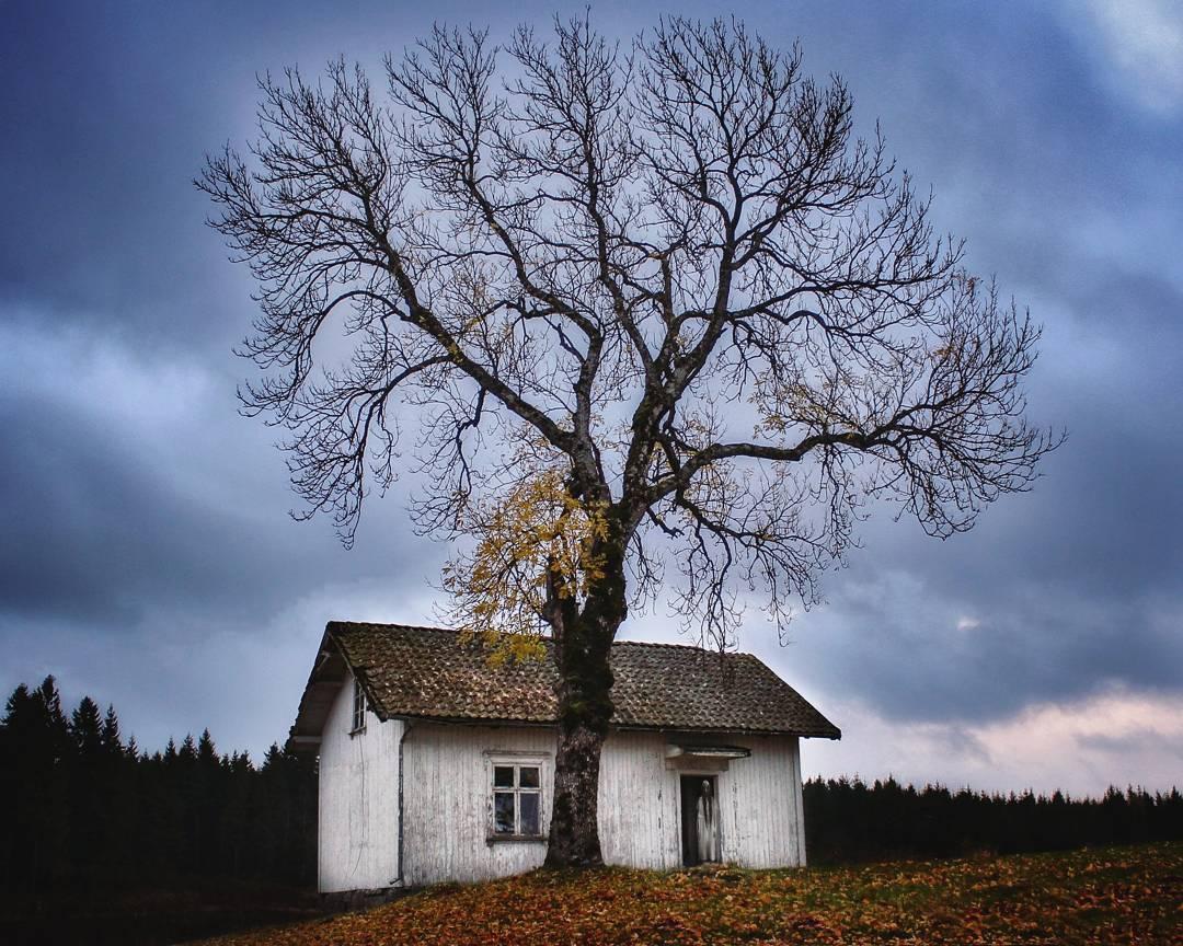 Одинокие заброшенные дома на снимках Britt Marie Bye