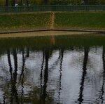 Осень Летний сад P1150810
