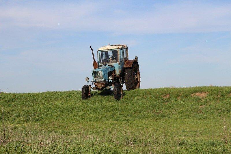 0 17dace ed130b1e XL - Менуэт Советскому трактору