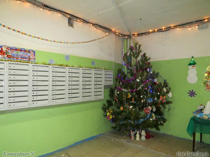 Новогодняя елка в подъезде