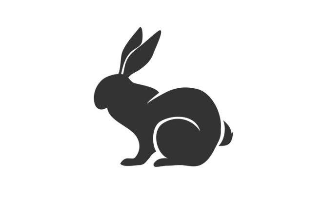 Кролик (Кот) отличается консерватизмом и хорошим вкусом. Большинству представителей этого знака по ж