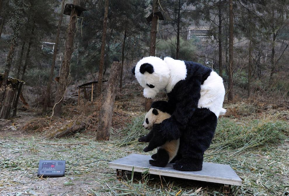 8. В прямом смысле этого слова. (Фото China Photos):