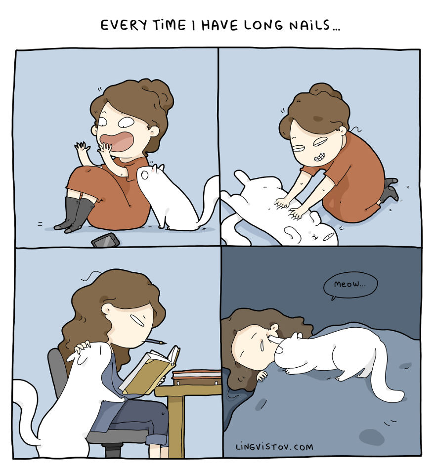 Жизнь с кошкой может превратиться в настоящее приключение
