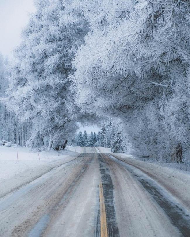 © marsianin178/pikabu      15. Побережье после снегопада усеяно снежками