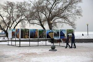 Фотовыставка «Дикая природа Дальнего Востока: сохранить и увидеть» развернулась на Спортивной набережной во Владивостоке
