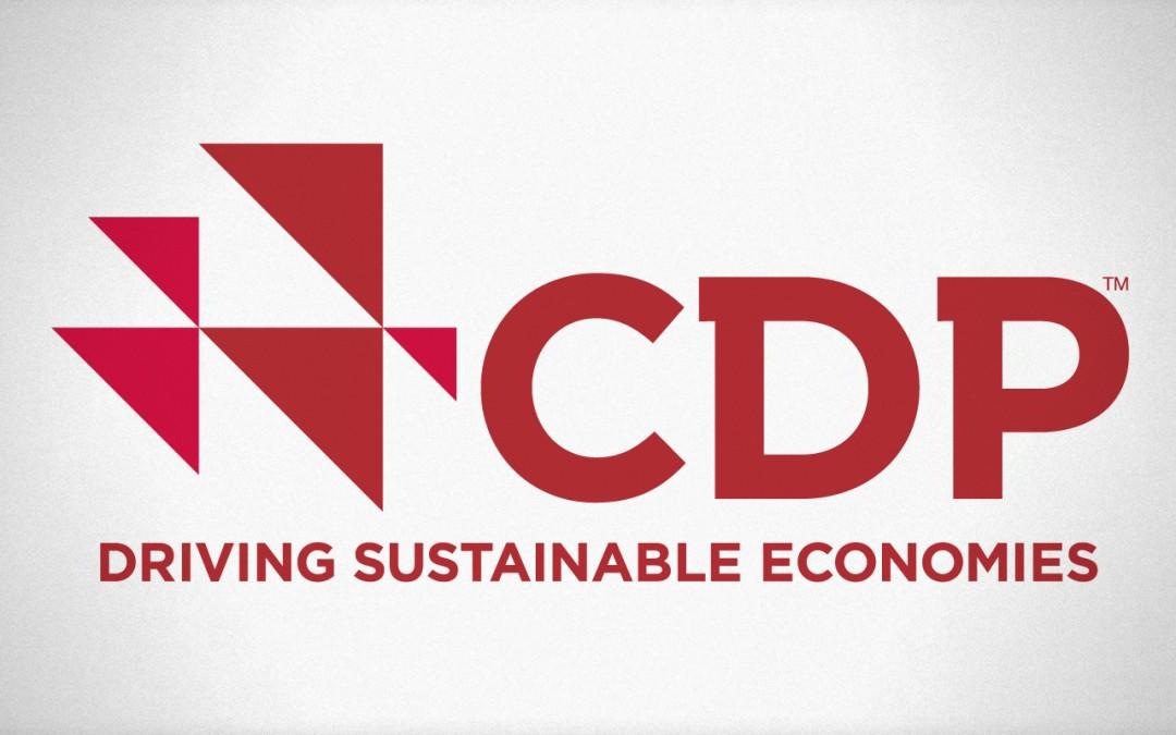 logo-cdp-large-1080x675.jpg