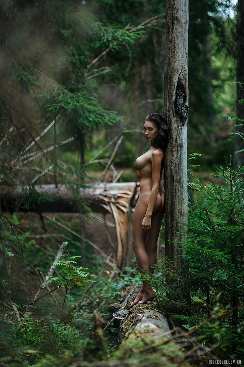 Wild / фото Игорь Кошелев