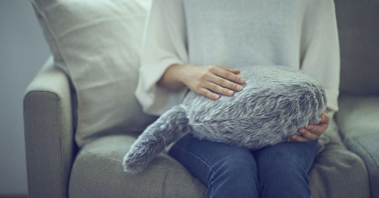 Qoobo — подушка, разработанная компанией Yukai Engineering Co. Все, что она делает, — виляет хвостом