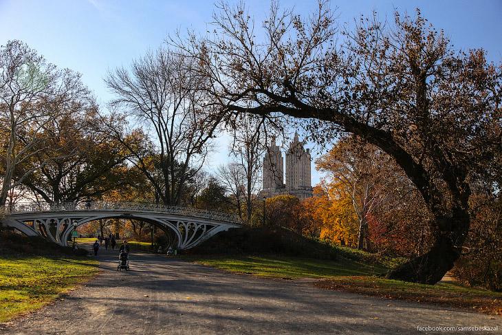 Знаменитый Центральный парк Нью-Йорка (33 фото)