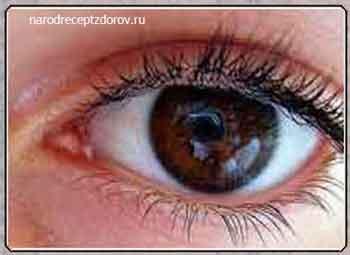 Травы улучшающие зрение