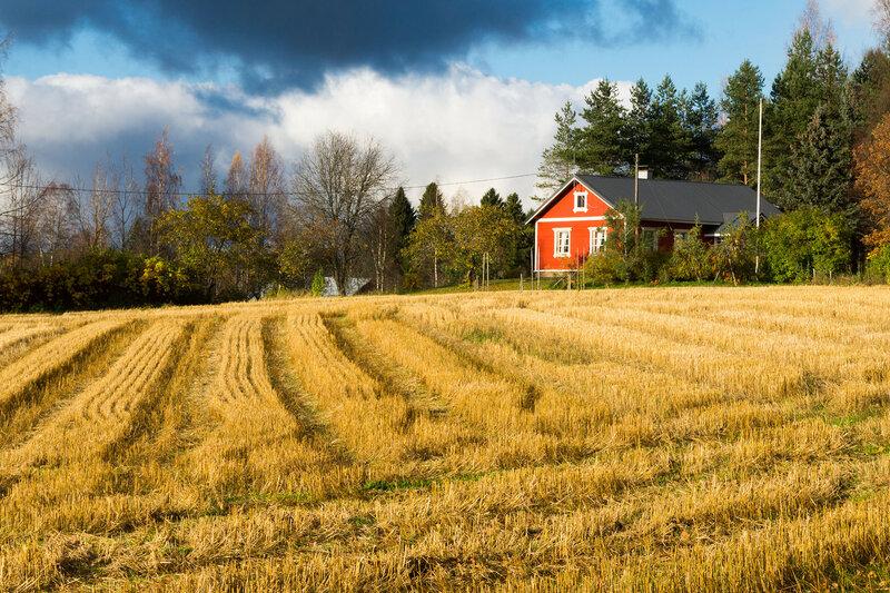 Пейзаж в финляндии с домиком и полем осенью