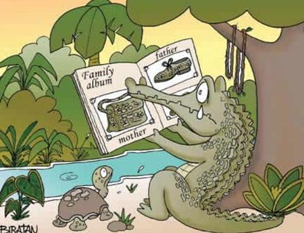 Plachut-li-krokodily-na-samom-dele.jpg