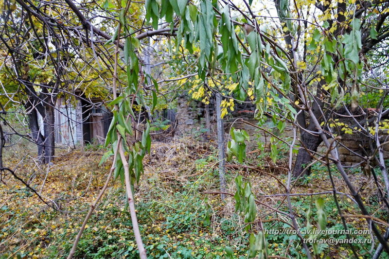Руины Мускусной мечети, Старый Крым