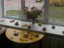 Осеннее веселье