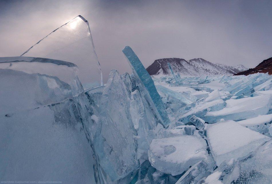 От опасений за свою шкуру спасает мысль про корову на льду: рядом с фермерским хозяйством, прямо на