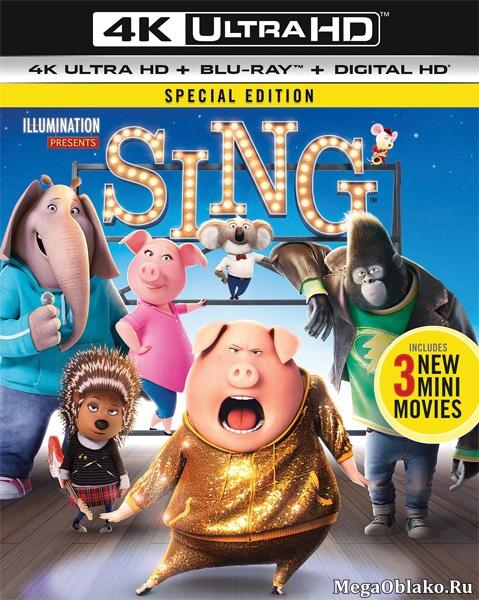 Зверопой / Sing (2016) | UltraHD 4K 2160p