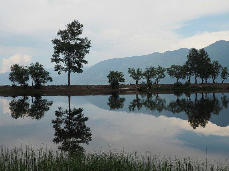 Алтай - южный берег Телецкого озера (Altai - southern shore of Teletskoye Lake)