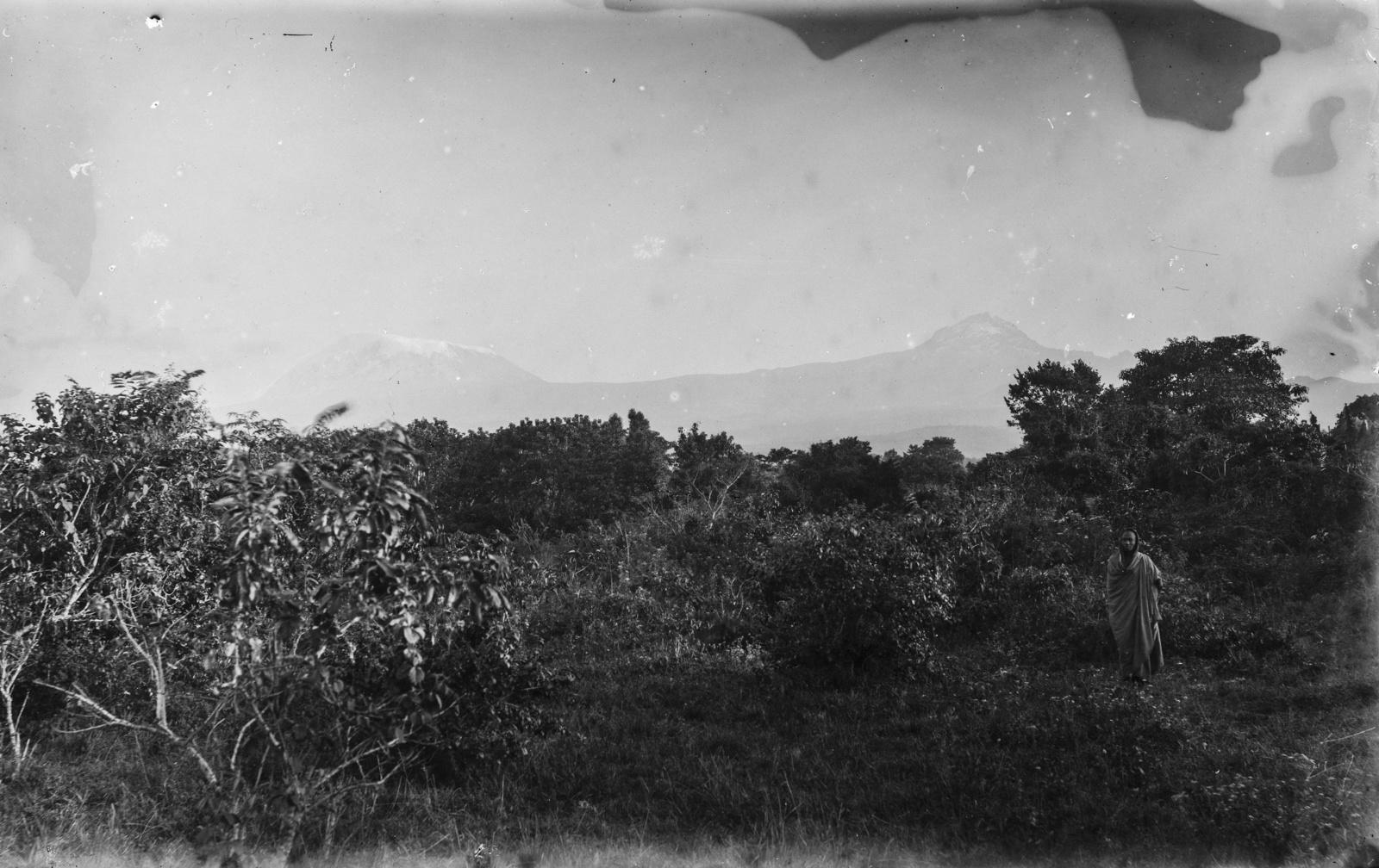 95. Килиманджаро с Кибо (слева) и Мавензи (справа)