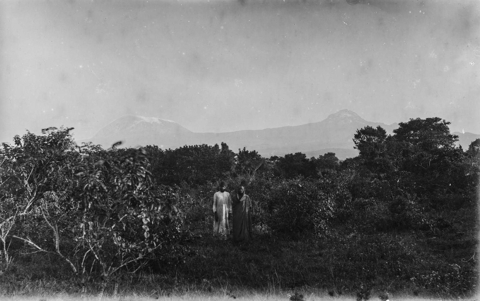96. Килиманджаро с Кибо (слева) и Мавензи (справа)