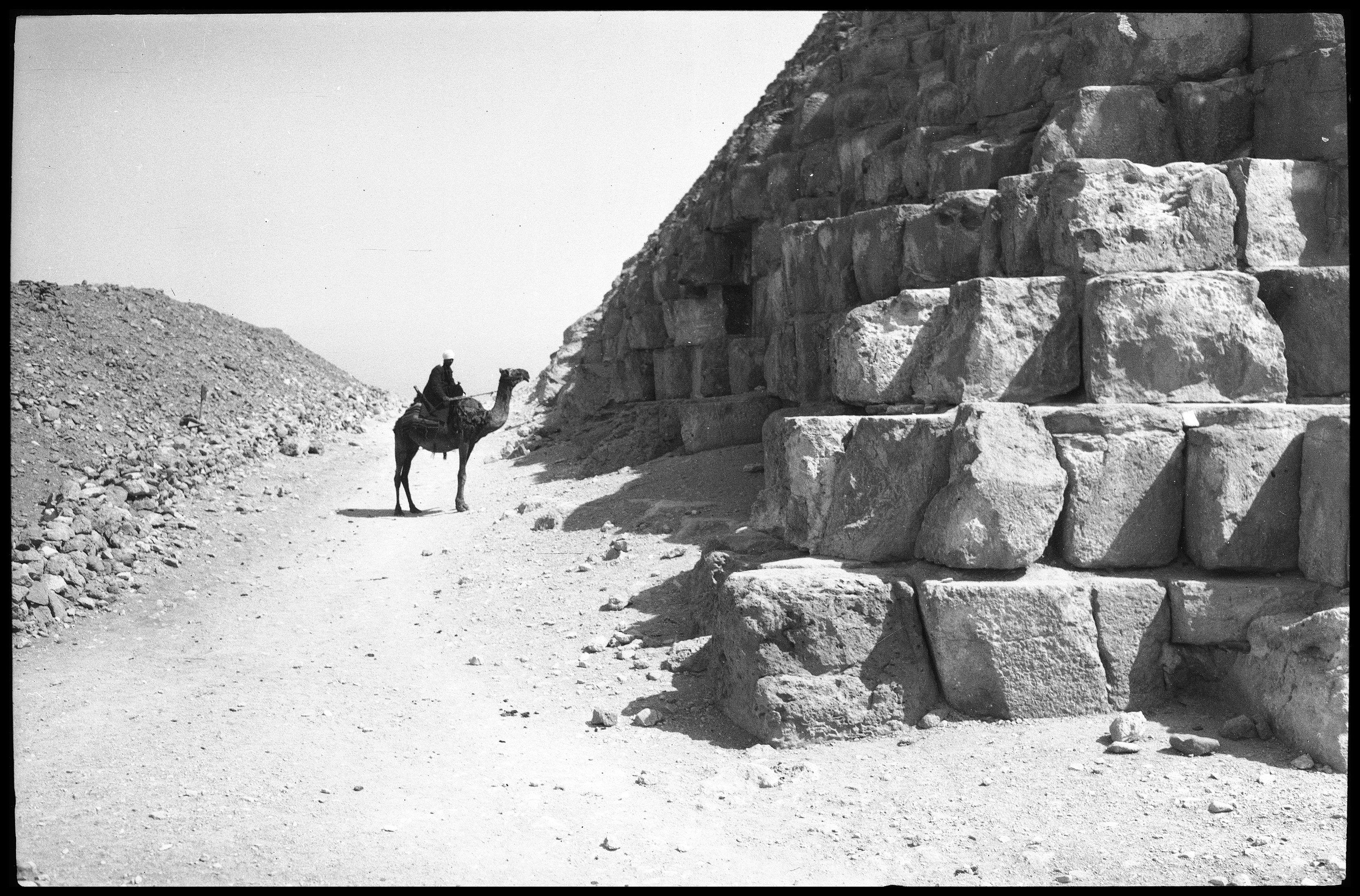 Гиза. Нижняя часть пирамиды и верблюд