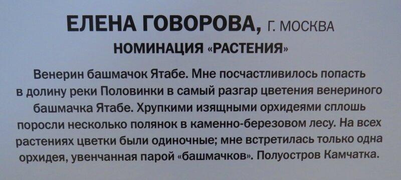 https://img-fotki.yandex.ru/get/877700/140132613.6a5/0_240959_7bbb9118_XL.jpg